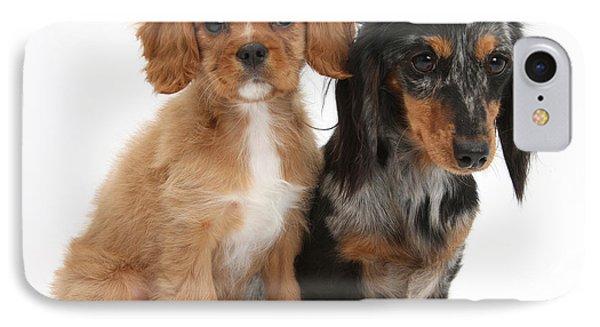 Spaniel & Dachshund Puppies Phone Case by Mark Taylor