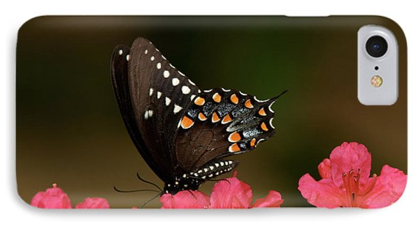 Spice Bush Swallowtail And Azaleas Phone Case by Lara Ellis