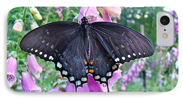 Spicebush Swallowtail Butterfly On Foxgloves - Papilio Troilus Phone Case by Mother Nature