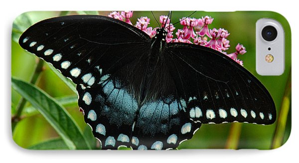 IPhone Case featuring the photograph Spicebush Swallowtail Din038 by Gerry Gantt