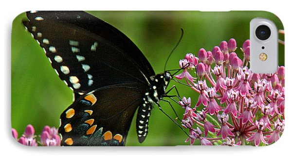 IPhone Case featuring the photograph Spicebush Swallowtail Din039 by Gerry Gantt