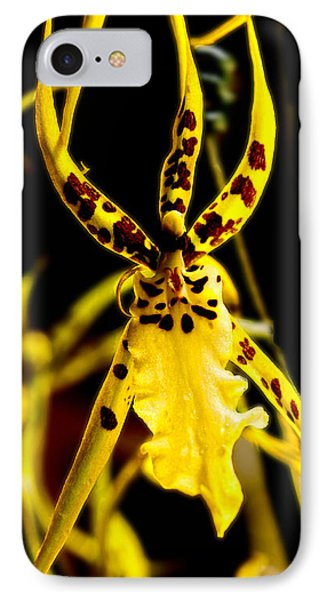Spider Orchid Phone Case by Barbara Middleton