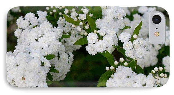 IPhone Case featuring the photograph Spirea Blooms by Maria Urso