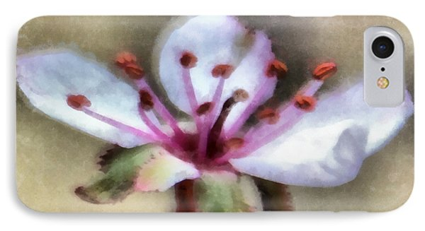 Spring Blossoms 1 Phone Case by Angelina Vick