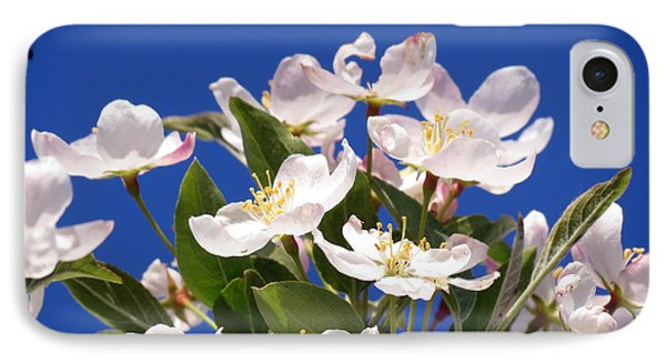 IPhone Case featuring the photograph Spring Blossoms by Darleen Stry