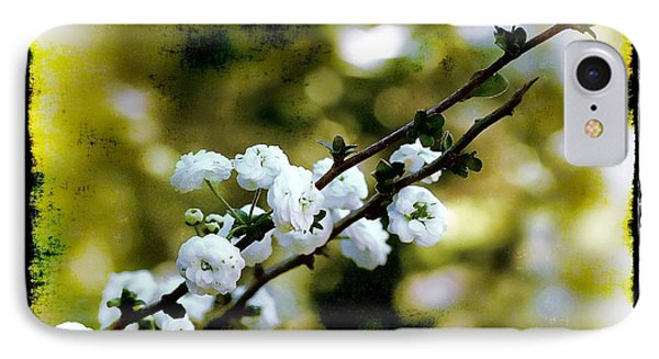 Spring Bough IPhone Case by Judi Bagwell