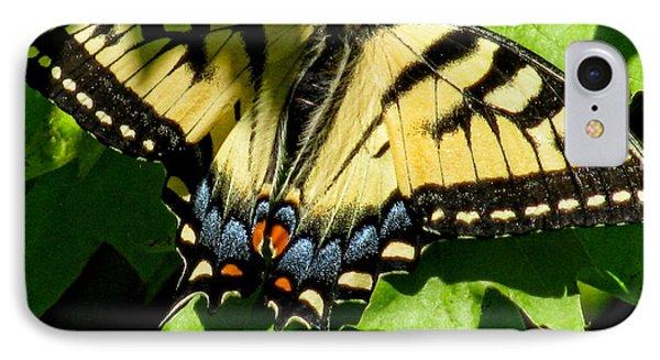 Spring Butterfly Phone Case by Debra     Vatalaro