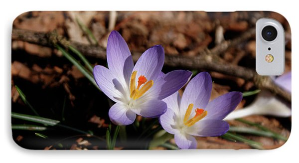 IPhone Case featuring the photograph Spring Crocus by Paul Mashburn