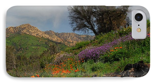 IPhone Case featuring the photograph Spring In Santa Barbara by Lynn Bauer