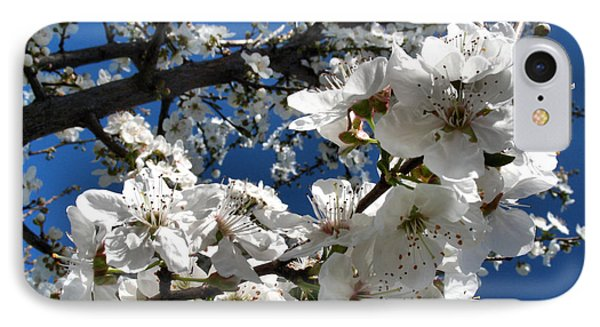 Spring Pear Blossoms 2012 Phone Case by Joyce Dickens