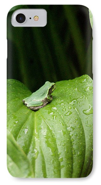 Spring Peeper IPhone Case by Jon Lord
