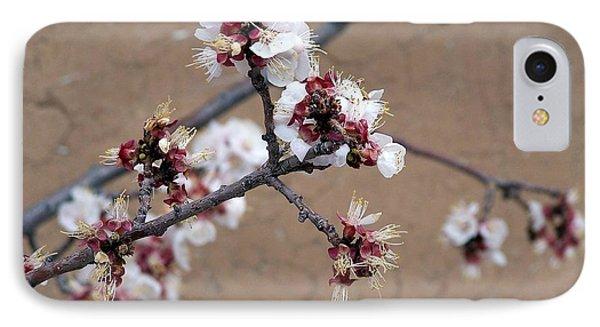 Spring Promises IPhone Case
