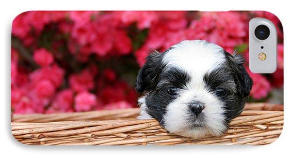 Spring Puppy  Phone Case by Darren Fisher