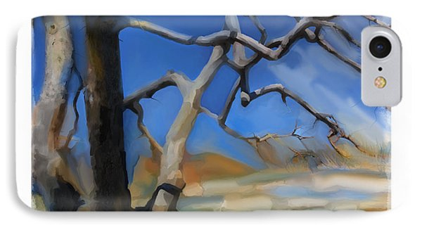 Spring Thaw 1 IPhone Case by Bob Salo