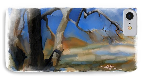 Spring Thaw 2 Variation IPhone Case by Bob Salo