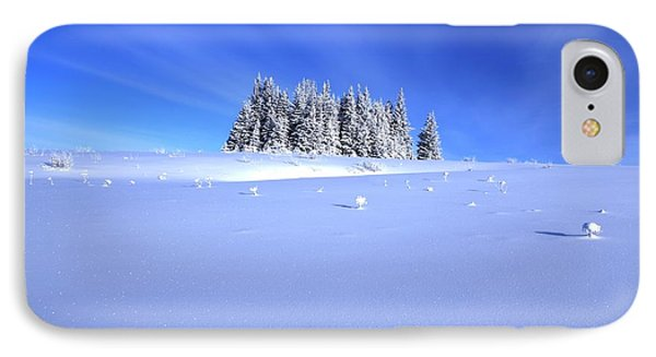 Spruce Grove In Winter IPhone Case by Michele Cornelius