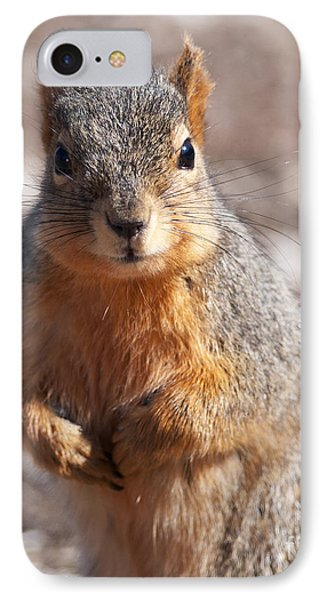 IPhone Case featuring the photograph Squirrel by Art Whitton