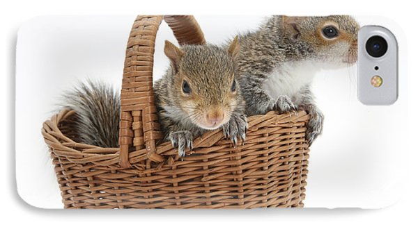 Squirrels In A Basket Phone Case by Mark Taylor