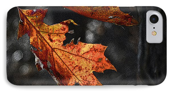 IPhone Case featuring the photograph Stained Glass In The Forest Cathedral by William Fields