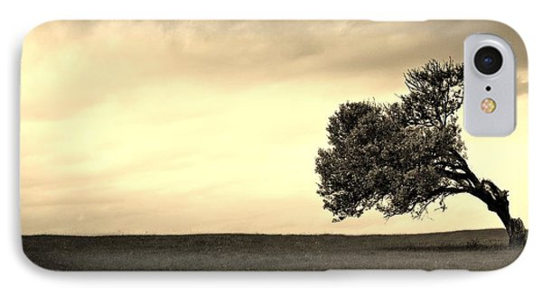Stand Alone Tree 1 Phone Case by Sumit Mehndiratta