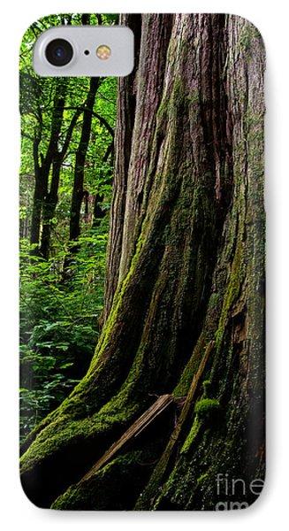Stanley Park Trees 1 Phone Case by Terry Elniski
