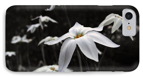 IPhone Case featuring the photograph Star Flowers by Deborah Smith