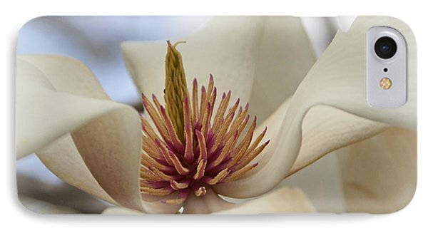 Star Magnolia Phone Case by Benanne Stiens