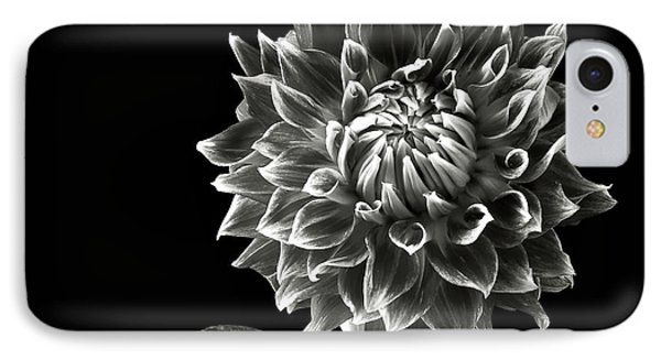 IPhone Case featuring the photograph Starburst Dahlia In Black And White by Endre Balogh