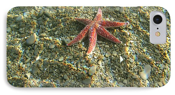 Starfish In Shallow Water Phone Case by Ted Kinsman