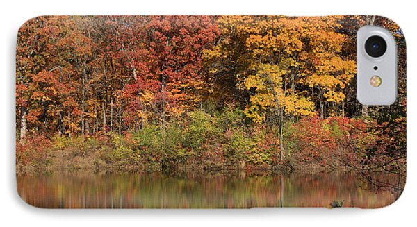 Sterling Pond Phone Case by Lyle Hatch