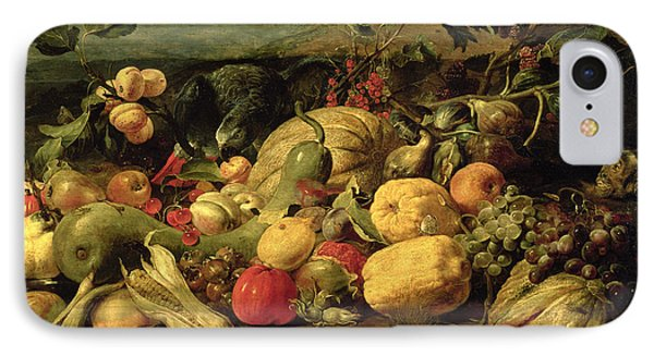 Still Life Of Fruits And Vegetables Phone Case by Frans Snyders