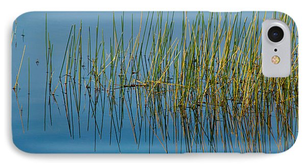 Still Water And Grasses Phone Case by Rich Franco