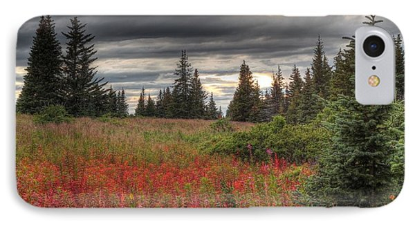 IPhone Case featuring the photograph Storm Clouds In Fall by Michele Cornelius