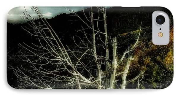 Storm Over The Jemez Mountains IPhone Case
