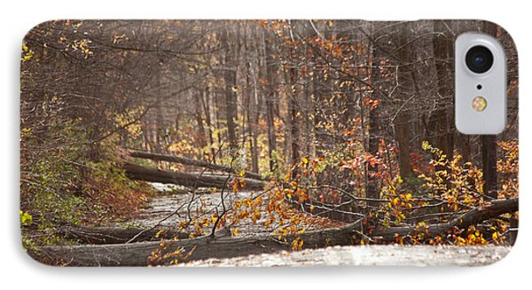Stormy Autumn Phone Case by Karol Livote