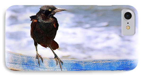 Stowaway On The Ferry Phone Case by Judi Bagwell