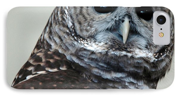Striped Owl Phone Case by LeeAnn McLaneGoetz McLaneGoetzStudioLLCcom