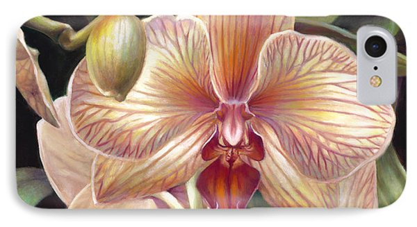 Striped Peach Orchid IPhone Case