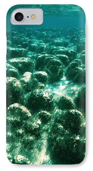 Stromatolites Phone Case by Peter Scoones