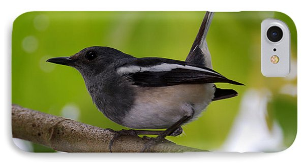 IPhone Case featuring the photograph Study Of A Magpie-robin by Fotosas Photography