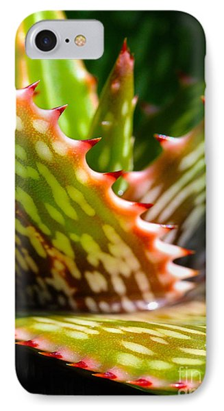 Succulents With Spines Phone Case by Judi Bagwell