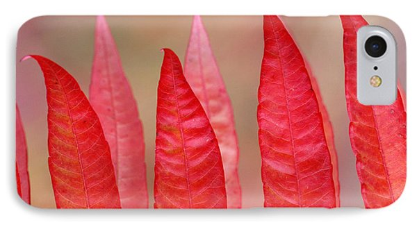 Sumac Leaves Rhus Coriaria In Fall Phone Case by Mike Grandmailson