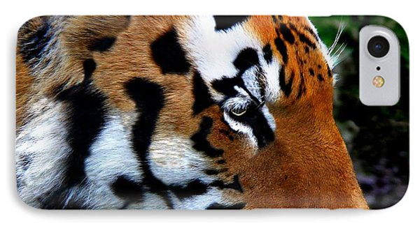 IPhone Case featuring the photograph Sumatran Strength by Davandra Cribbie