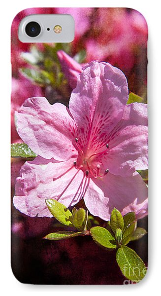 Summer Blossom IPhone Case by Billie-Jo Miller