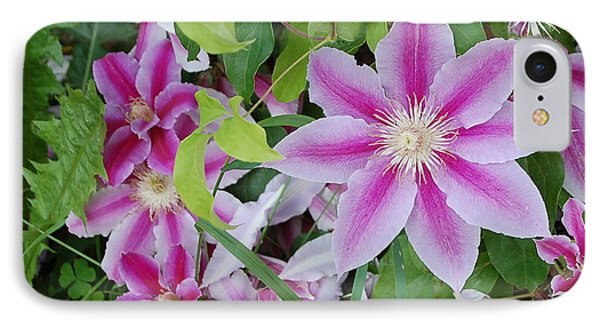 Summer Clematis IPhone Case
