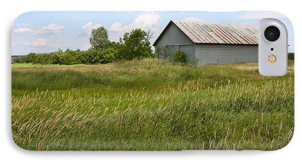 Summer Field IPhone Case by Robin Regan