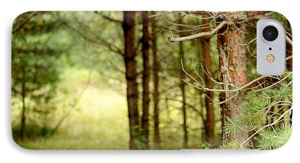 Summer Forest. Pine Trees Phone Case by Jenny Rainbow