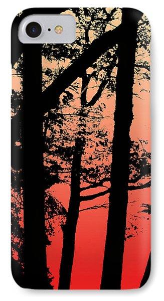 Summer Sunset IPhone Case by Lauren Radke