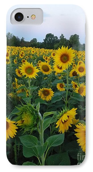 Summers Glory IPhone Case
