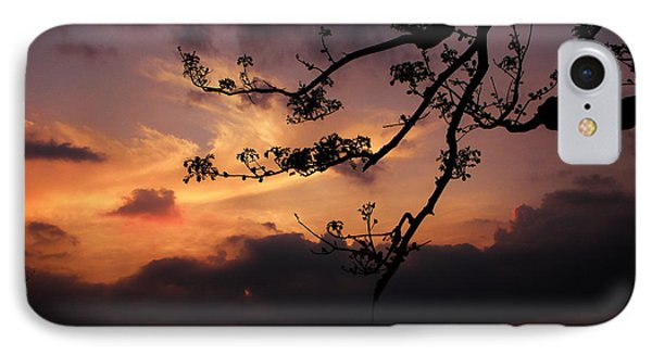 Sun Caught By Branches  Phone Case by Rosvin Des Bouillons
